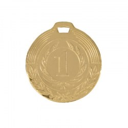medal_zoloto_047-040-100_800